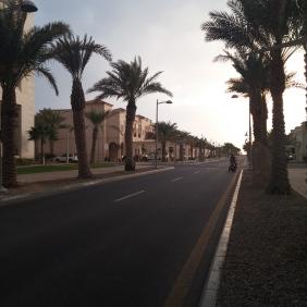 KAUST residential area