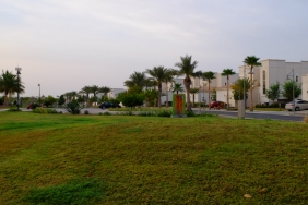 Villas with garden view